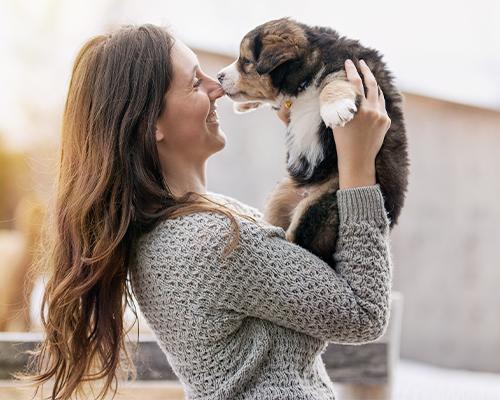 Sokak Hayvanlarını Sahiplenmek Için 5 Güzel Sebep